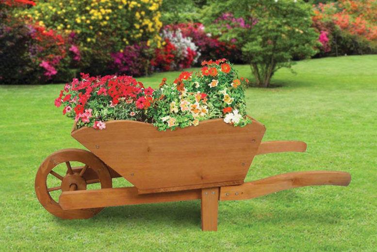 Xl Wooden Wheelbarrow Planter Plants Flowers Deals In Shop Wowcher