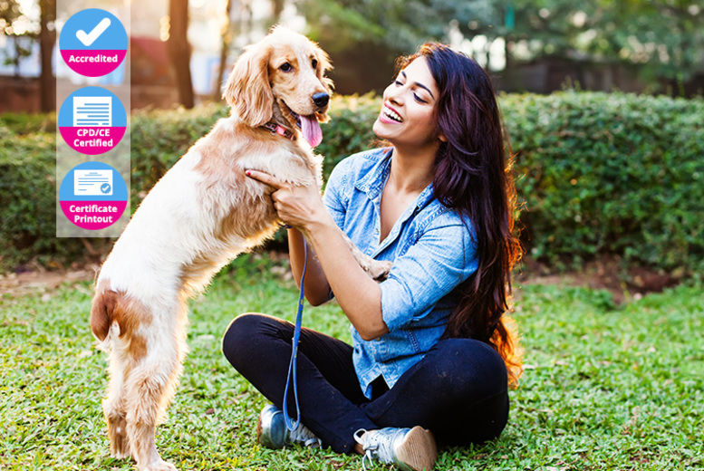 North_Royal_Training_Limited_Dog_Behaviour_&_Training