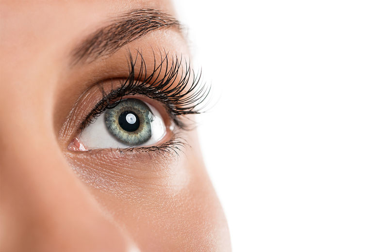 Lash life & Tint Accredited Online Course