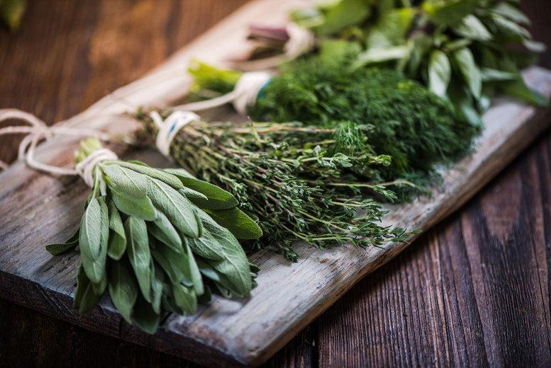 Online Master Herbalist