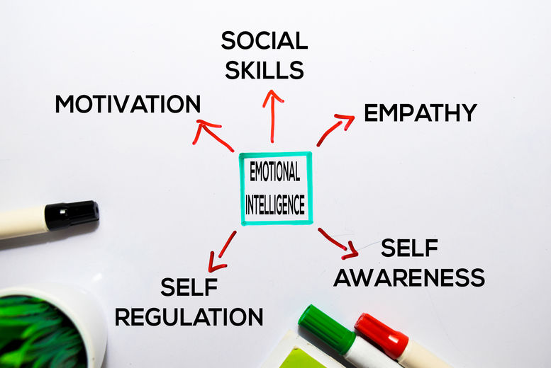 Emotional Intelligence & Resilience Diploma