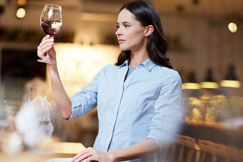 Wine-Appreciation