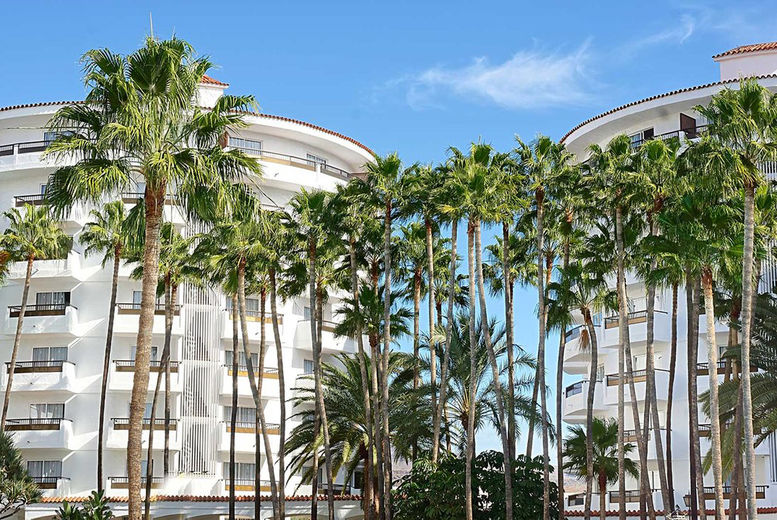 Servatur Waikiki, Gran Canaria, Spain - Palm Trees