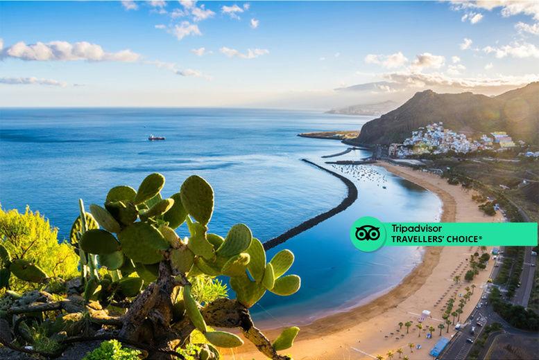 Tenerife Stock Image 1 Sticker