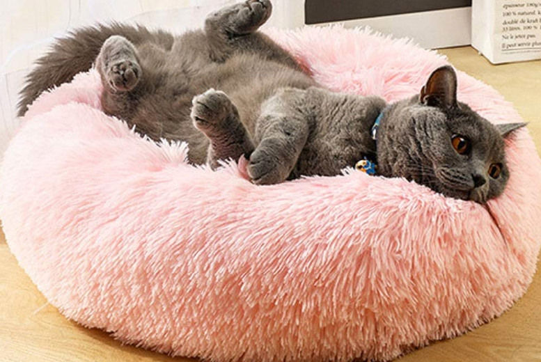 Plush-Pet-Bed-1