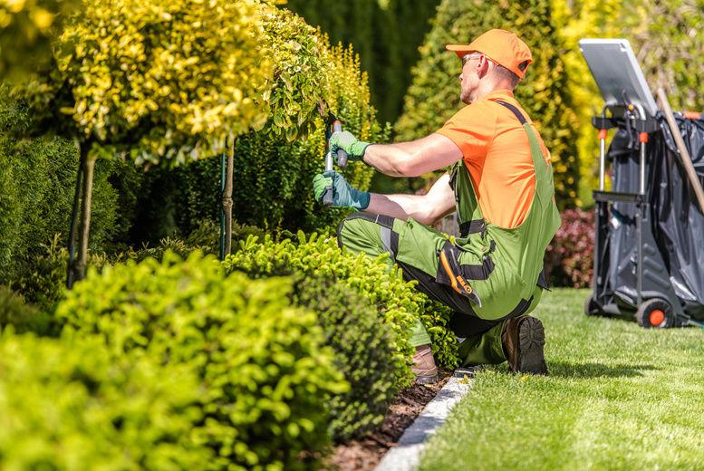 Garden Design and Landscaping Online Course | Nottingham