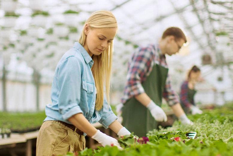 Online Horticulture & Organic Gardening Course