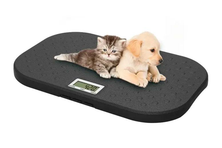 HOMEVIBE-LTD---Large-Electronic-Pet-Scale