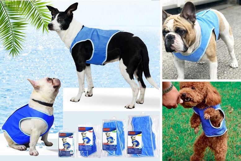 Cooling-Dog-Vest-1