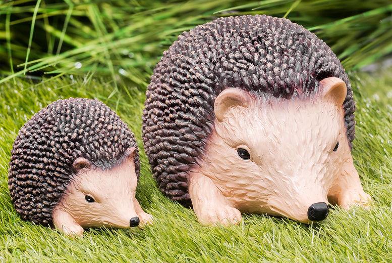 Chimp-Electronics---Small-&-Large-Hedgehog