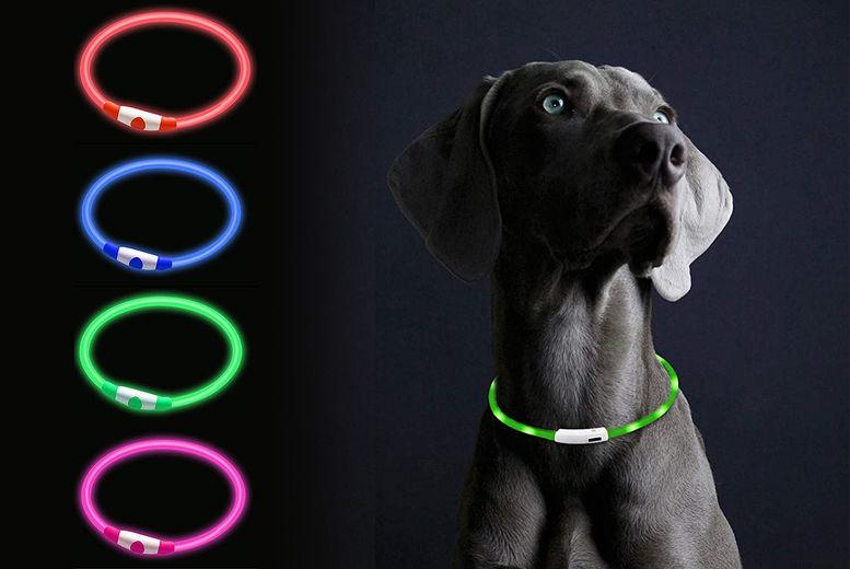 LED=Pet-Collar-1