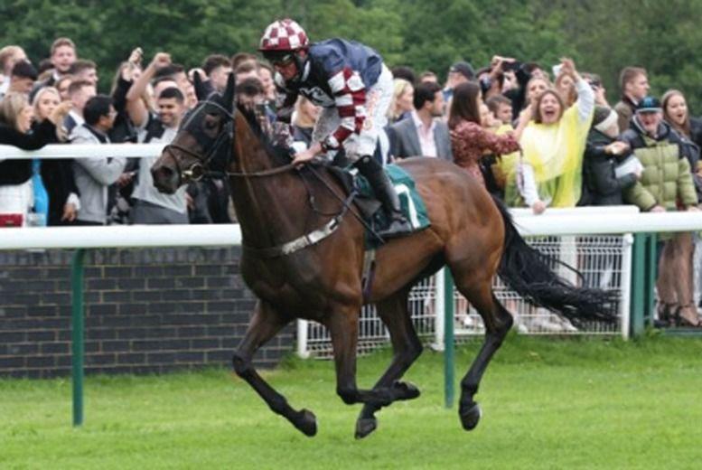 Racehorse Ownership Voucher