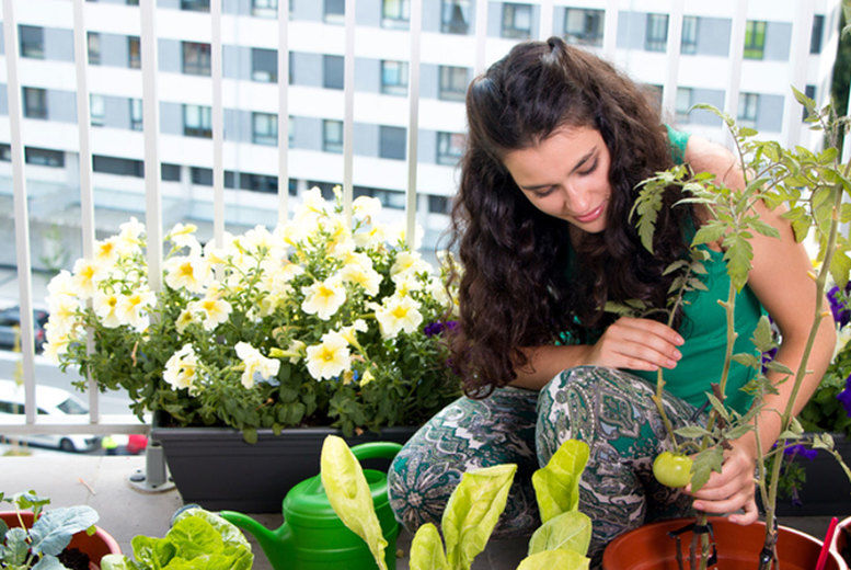 Growing-Food-in-Small-Gardens-Course-Voucher