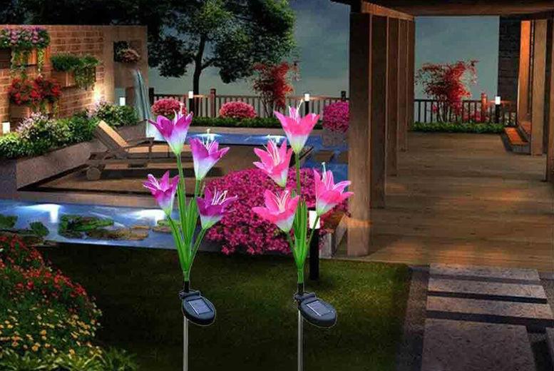 2-Pack-Lily-Flower-Solar-Power-Garden-Lights-Stake-Lights-1