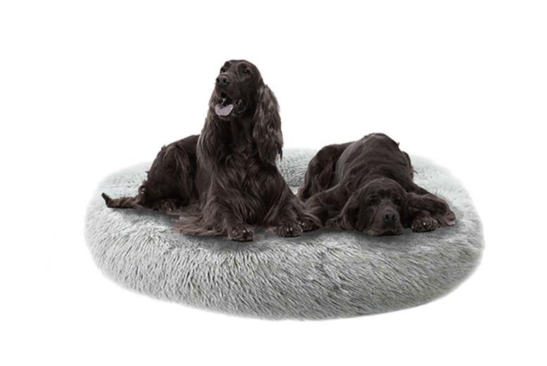 XL-Pet-Bed