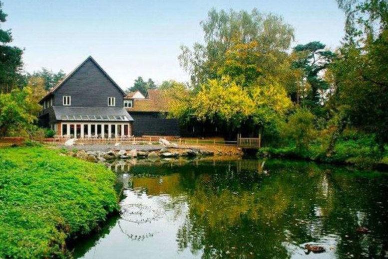 Great Hallingbury Manor-Gardens