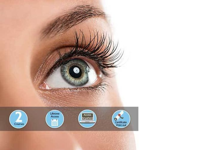 Eyelash Perming Or Eyelash Eyebrow Tinting Course London Wowcher