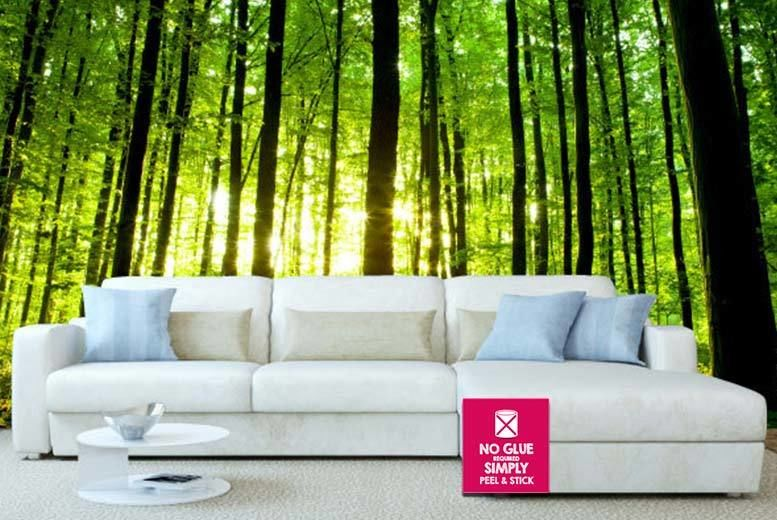 Luxury Peel & Stick 'Giant' Wall Mural - Over 30 Designs! | Shop